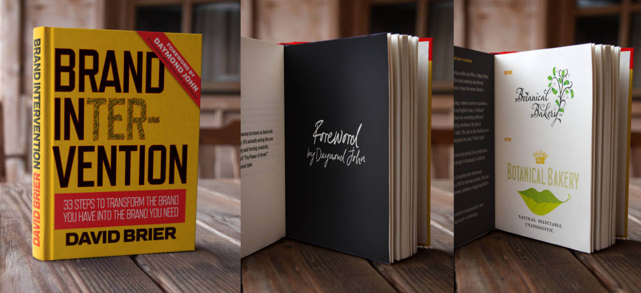 Brand Intervention Book by David Brier