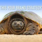 Seinfeld and the Frightened Turtle Brand Strategy