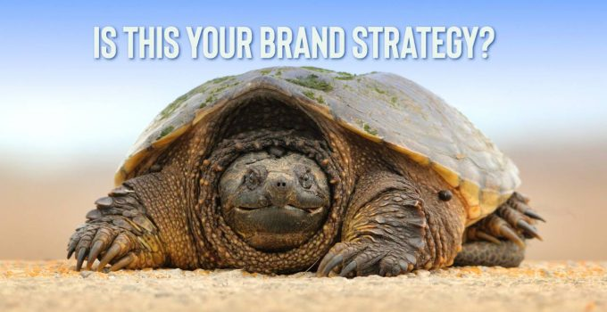 Does Your Brand Resemble a Frightened Turtle?